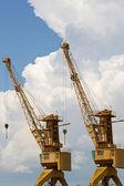 Cranes. — Stock Photo