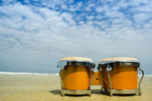 Bongo on the beach — Stock Photo