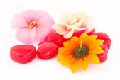 Group of flower candle — Foto de Stock