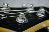 Close up of bass string — Stock Photo