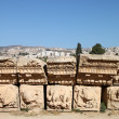 Stock Photo: Detail in Jerash, Jordan