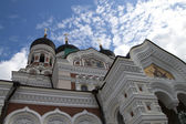 Alexander Nevsky Cathedral — Photo