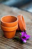 Pots en argile miniature — Photo