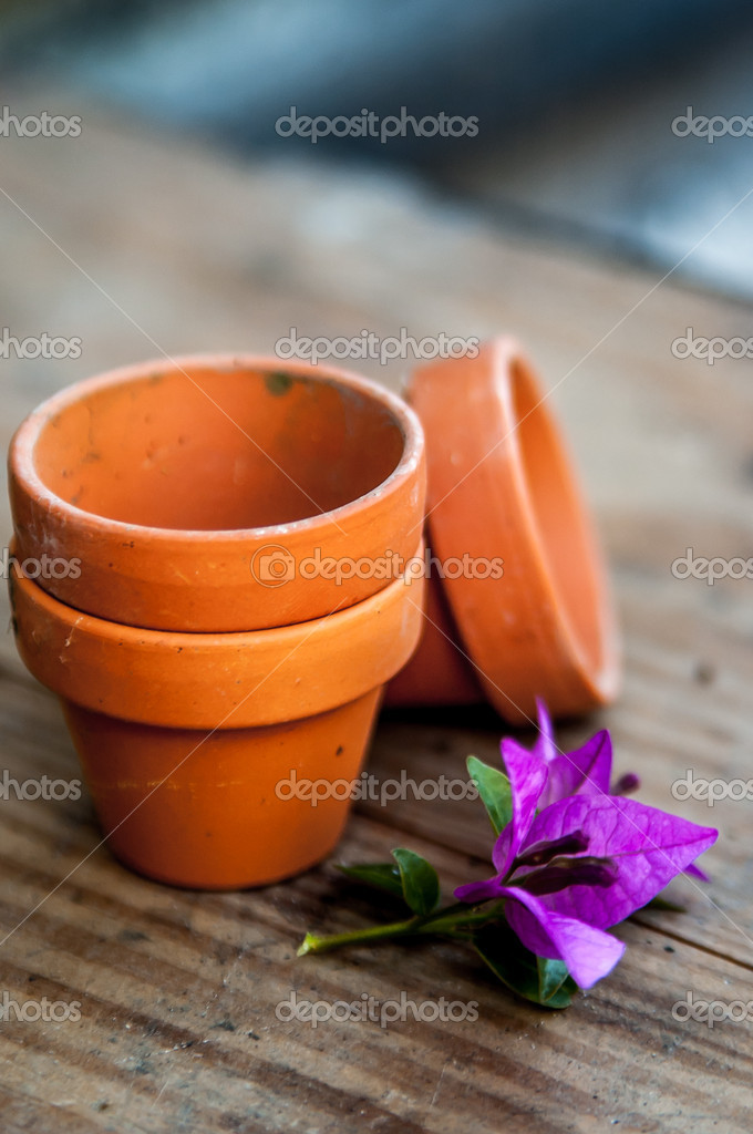 Miniature clay pots at the garden and a bougainvillea flower at the garden  Stock Photo #10855859