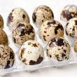 Quail eggs in the container — Stock Photo #11858602