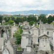 Cemetery of Loyasse, Lyon, France — Stock Photo #11780322