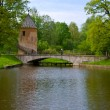 The bridge of lovers in old park — Foto Stock
