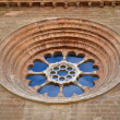 Stock Photo: Rosette of Cathedral of St. Mary of LSeu Vella