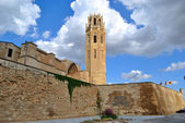 The Cathedral of St. Mary of La Seu Vella — Stock Photo