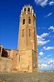 La seu Vella Meryem Ana Katedrali — Stok fotoğraf