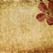 Earthy floral background image and useful design element — Stock Photo