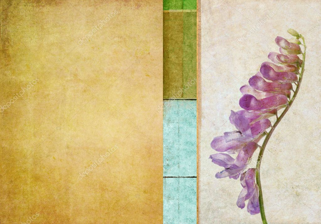 Floral grunge background — Stock Photo #11340260