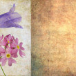 Floral grunge background — Stock Photo