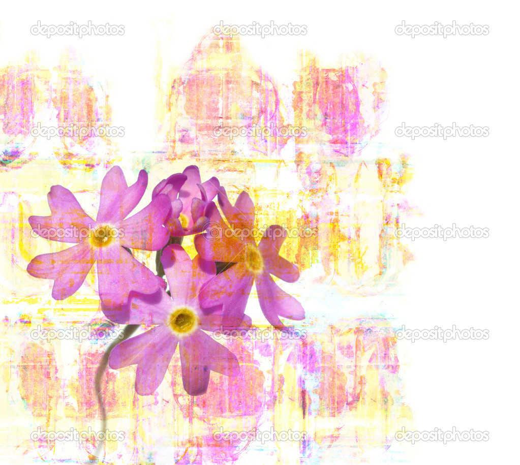 Vibrant floral illustration and design element  — Stock Photo #11673452