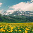 Gorgeous alpine landscape of eastern switzerland — Stock Photo