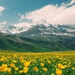 Gorgeous alpine landscape of eastern switzerland — Stock Photo