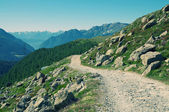 Alpine landscape in Val Poschiavo, Switzerland — Stock Photo