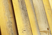 Background texture of bamboo — Stock Photo