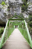 Wood bridge or walkway through the mountain — Stock Photo