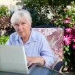 QUizzical Senior Woman with Computer - Stock Photo