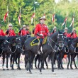 Stock Photo: Royal CanadiMounted Police Musical Ride