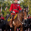 Royal CanadiMounted police Musical Ride Commander — Stock Photo #11315658