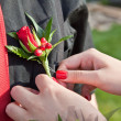 Stock Photo: Prom boutonniere