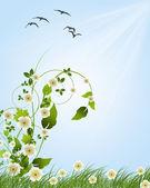 ромашки в траве против голубого неба. — Cтоковый вектор