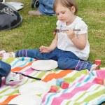 meisje met een picknick — Stockfoto