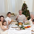 Stock Photo: Family tusting with white wine in a Christmas dinner