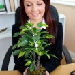 Pretty businesswoman holding a plant — Stock Photo