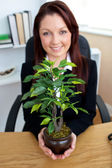 Glowing businesswoman holding a plant — Stok fotoğraf