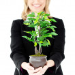 Stock Photo: Charismatic businesswomshowing plant at camera
