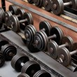 Collection of barbells — Stock fotografie
