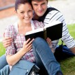 Smiling couple of students reading a book sitting on grass — Stock Photo