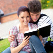 Stock Photo: Young couple of students reading a book sitting on grass