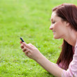 Stock Photo: Delighted young woman writing a message on her phone sitting on the grass