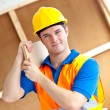 Self-assured young male worker with yellow helmet carrying w — Stock Photo #10836583