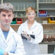 Stock Photo: Two assertive scientists looking at the camera standing