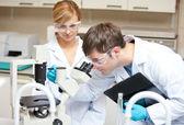 Zwei wissenschaftler, die etwas mit einem mikroskop beobachtet — Stockfoto