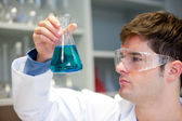 Young scientist looking at a liquid in an erlenmeyer — Stock Photo