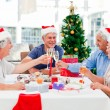Seniors on Christmas day at home — Stock Photo #10844198