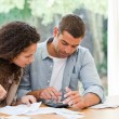 Stock Photo: Young couple calculating their domestic bills
