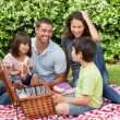 Family picnicking in the garden — Stock Photo #10846394