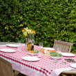 Lunch table in garden — Stock Photo #10846489