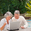 Royalty-Free Stock Photo: Retired couple buying something on internet