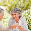 Happy senior couple drinking wine and toasting each other — Stock Photo