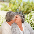 Man kissing his wife in the garden — Stock Photo