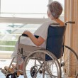 Stock Photo: Senior womin her wheelchair looking out window
