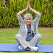 Senior woman doing her streches in the garden - Stock Photo